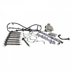 Ford Motorcraft Fuel System Contamination Repair Kit, Ford (2015-16) 6.7L Power Stroke Pickup
